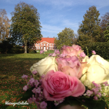 Quality Time – Romantik im Hindsgavl Slot