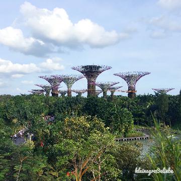 Singapur mit Kids – Gardens by the Bay & Wasserpark
