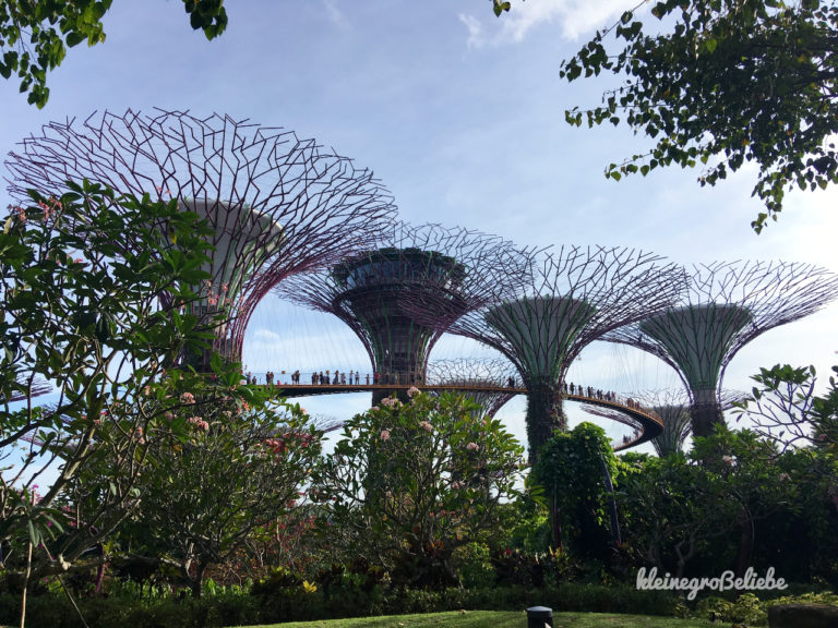 Singapur Gardens by the Bay - Skytrees - Skyway